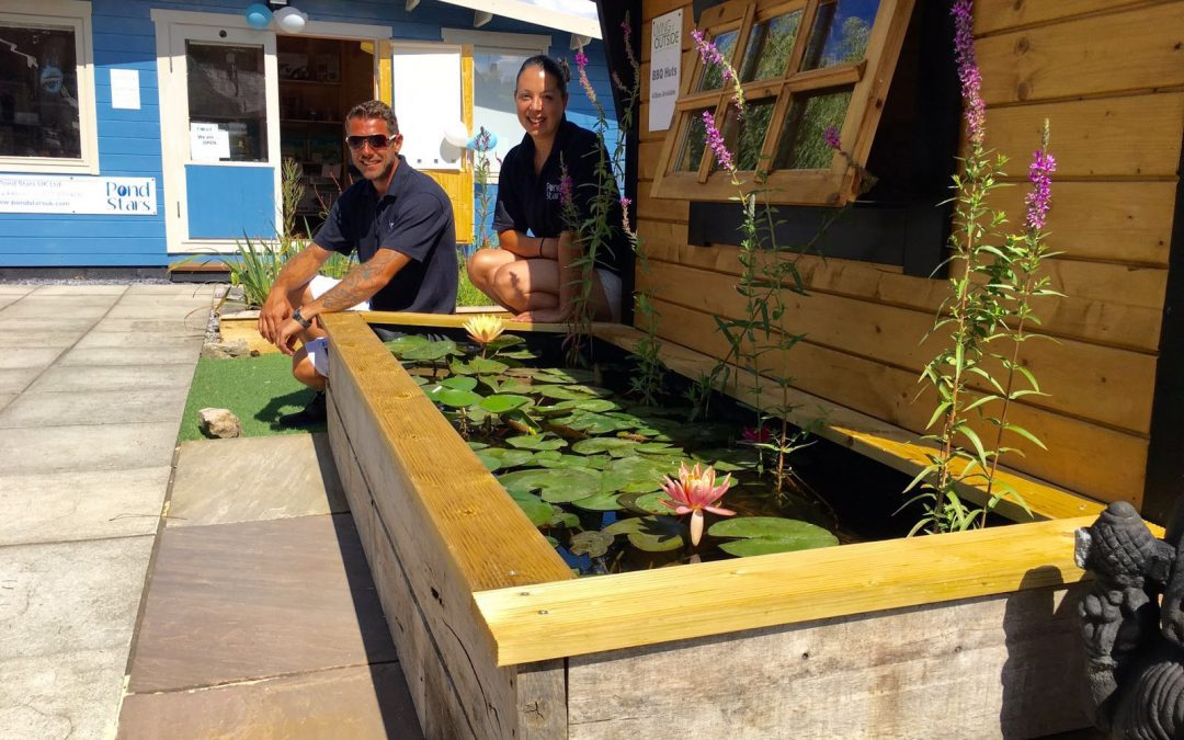Dorset Pond Supplies, Design, Construct & Maintenance – Pond Stars UK –