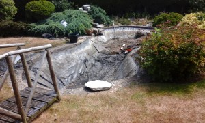 Pond Stars UK - Pond Renovation