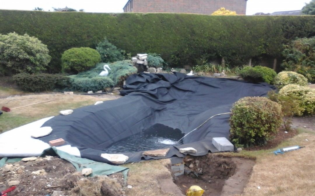 Pond Liner – The best for your pond