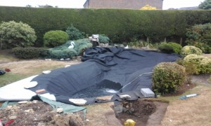 Pond Liner - Installation