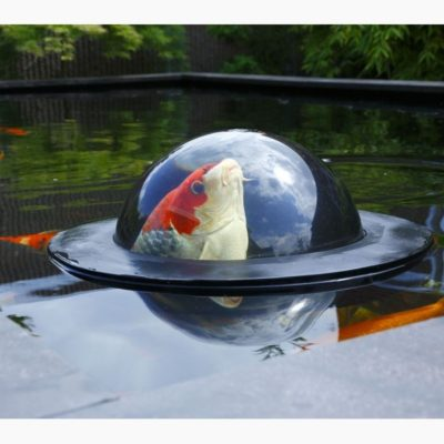 floating fish dome pond stars uk