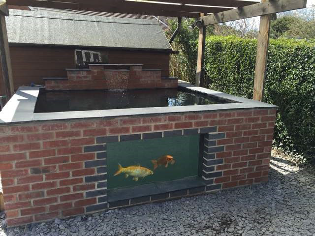 Pond design ideas raised koi ponds pond stars uk dorset for Koi pond window