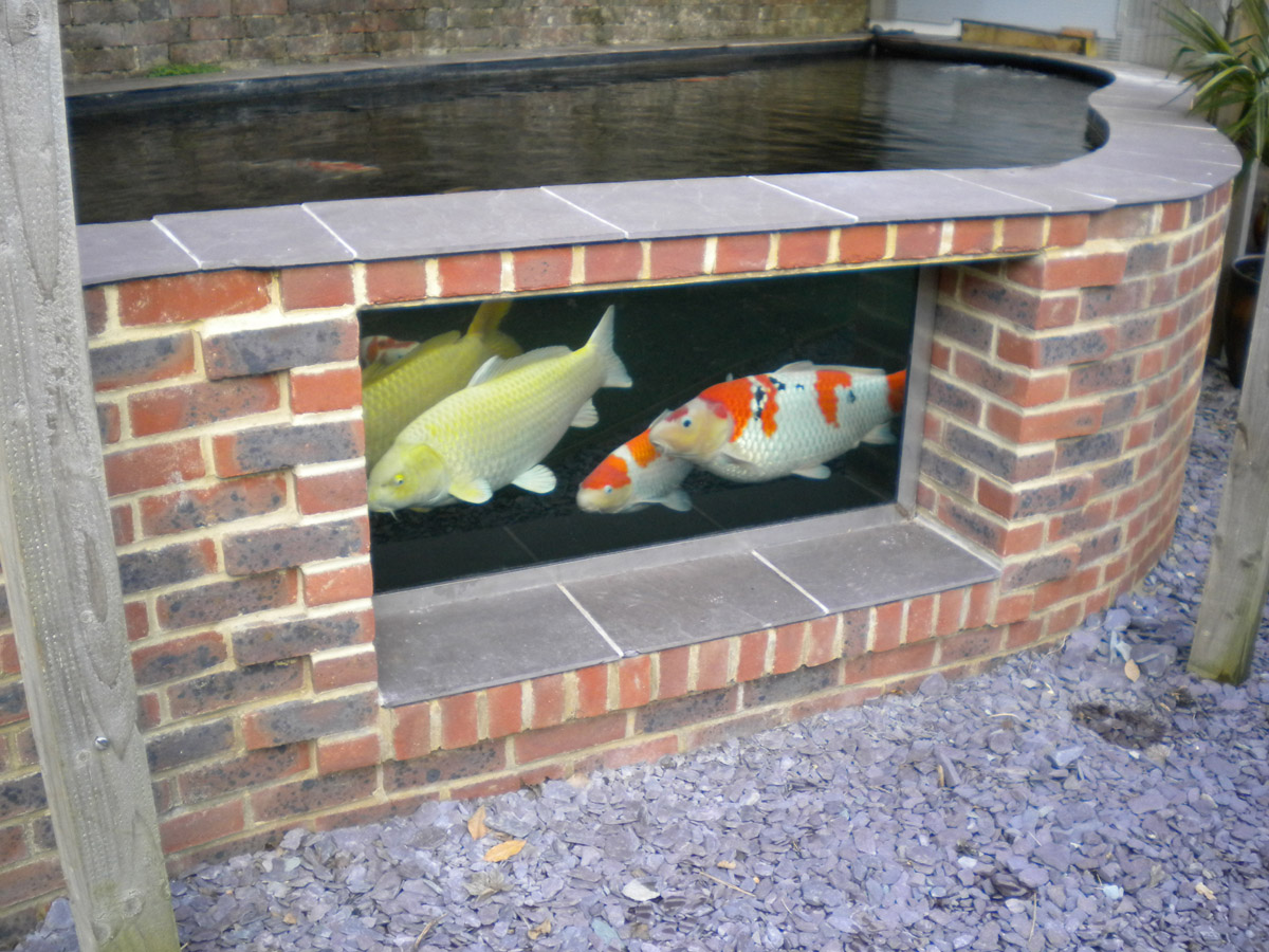 Pond design ideas raised koi ponds pond stars uk dorset for How to build a koi pond on a budget