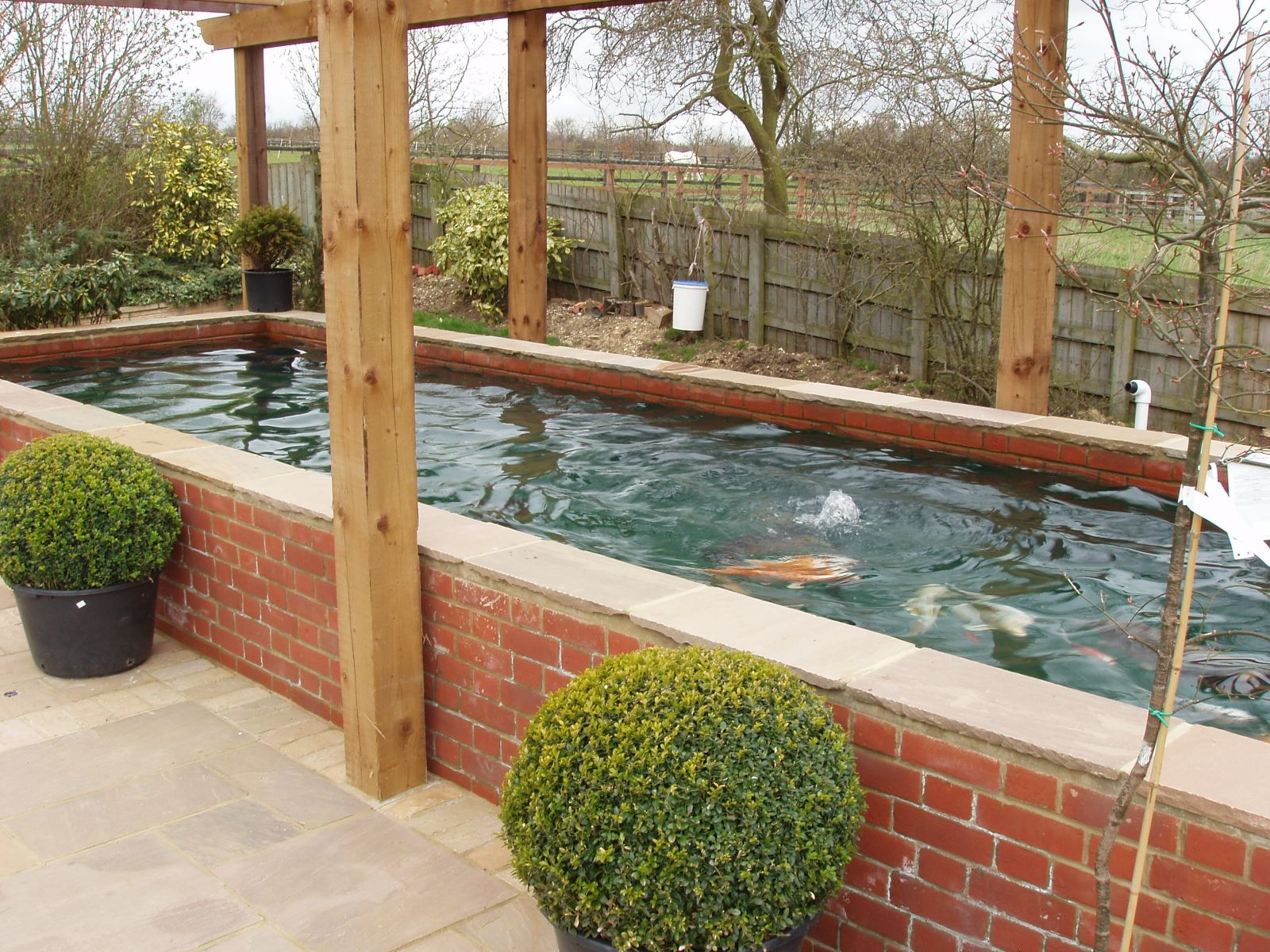Pond design ideas raised koi ponds pond stars uk dorset for Square pond ideas