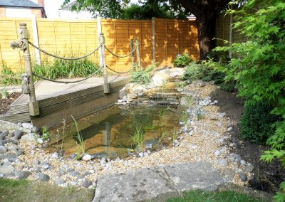 Dorset Pond Renovation