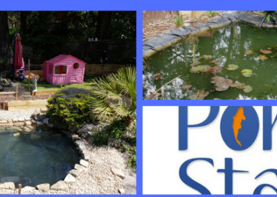 Pond Renovation – Dorsets Leading Pond Builder